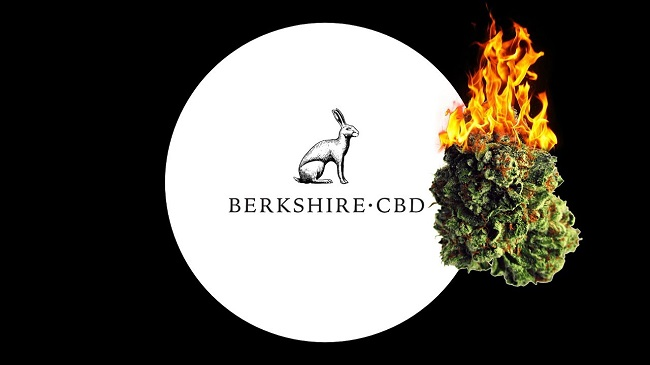 Berkshire CBD Vendor