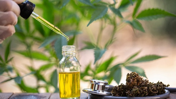 CBD oil and flower