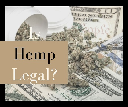 Is Hemp Legal